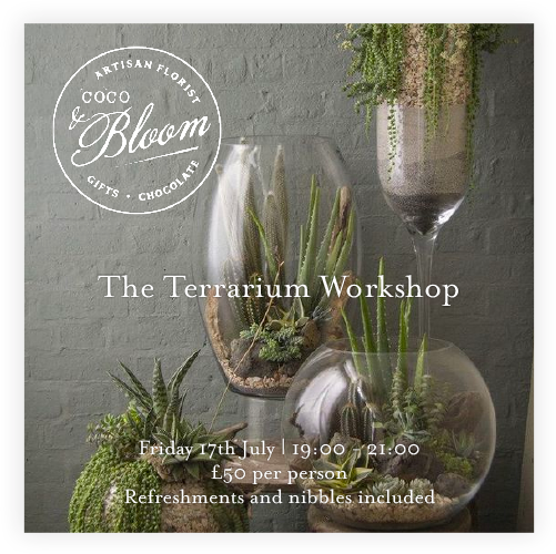 The Terrarium Workshop